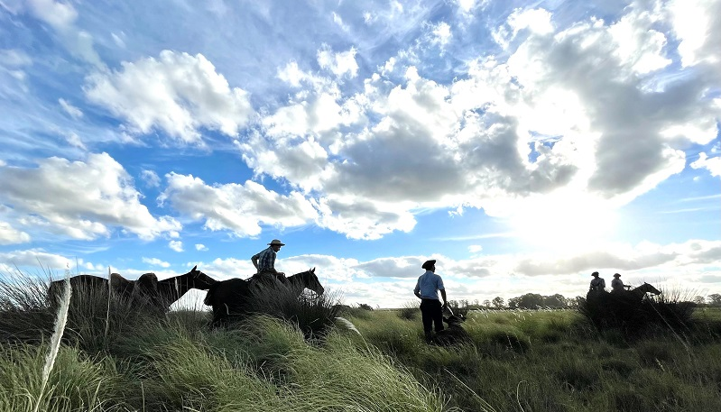 A group of cowboys and horses travel across grassy plains