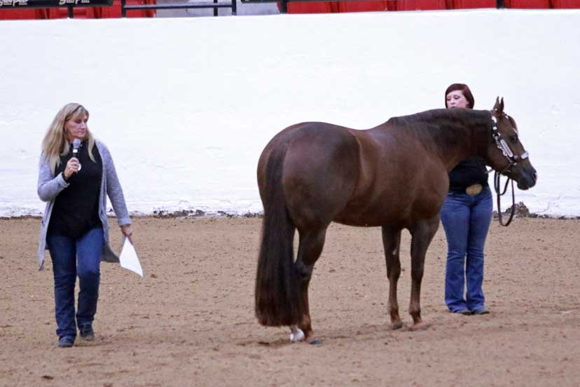 A Ride The Pattern educational event. One woman poses as an exhibitor holding a horse in showmanship while the instructor walks around them.