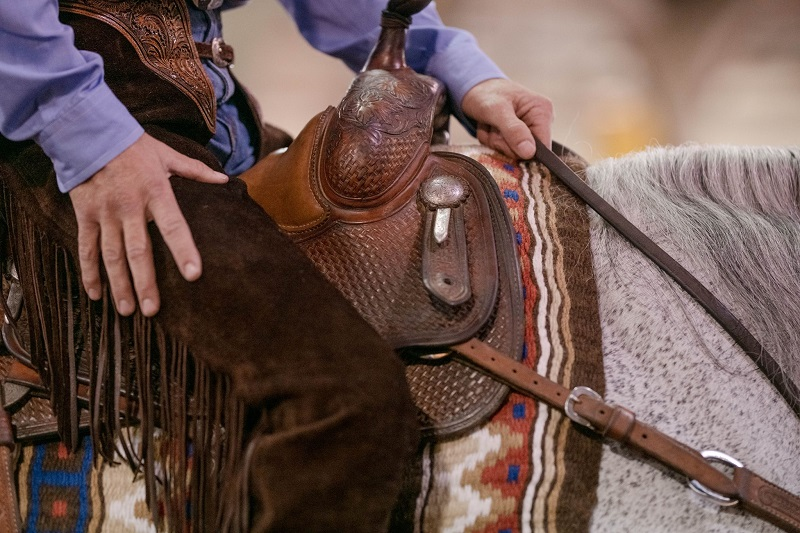 A person's hand on the back of a horse near a saddle horn