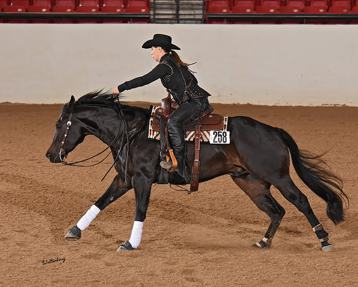 a woman wearing a custom western horse show vest with chaps runs a large fast reining circle on a brown Quarter Horse