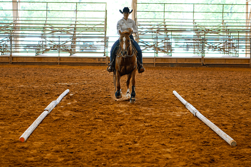 find your center reining exercise with Texas A&M Stock Horse Team (Credit: Taylor Helms)