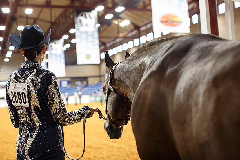 Select World showmanship exhibitor and horse ready at the in gate, generic showing confidence (Credit: Abigail Boatwright for AQHA Journal)