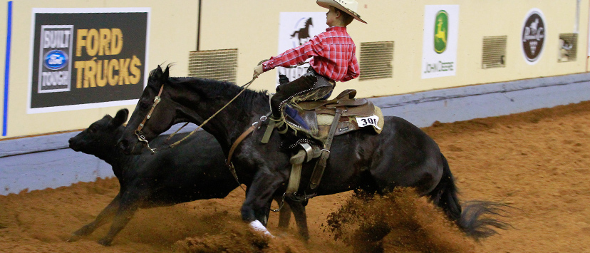 Jesse Spence leased TC Lena then won the 2014 AQHA youth working cow horse world championship