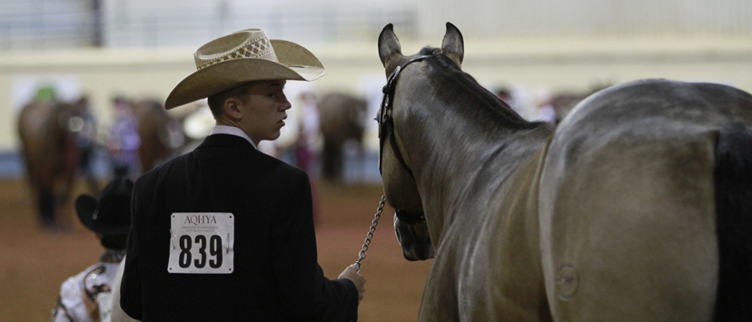 Jack Medows and Surprizintheprincess, youth performance halter world champions