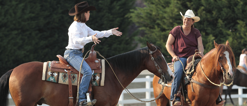 Find a trainer or an AQHA Professional Horseman