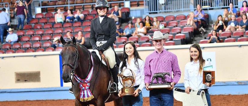 2018 AQHA youth working hunter world champions Mackenzie Njoo and A One Nite Stand (Credit: Journal)