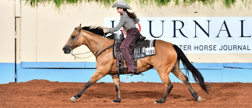 2018 AQHA 13-&-under ranch riding champion