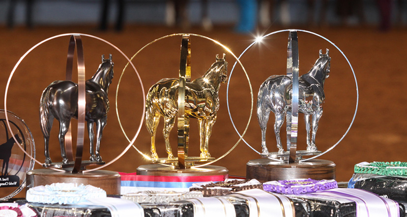 A line of trophies, silver gold and bronze with an arena background