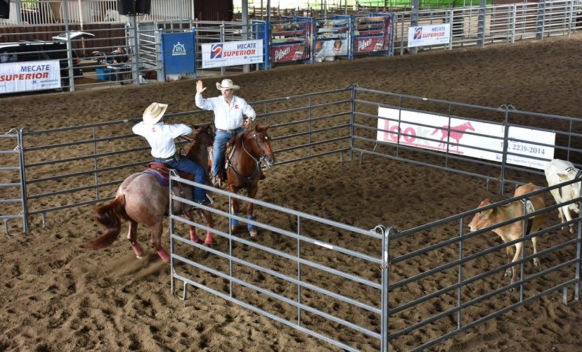 two men team penning in costa rica