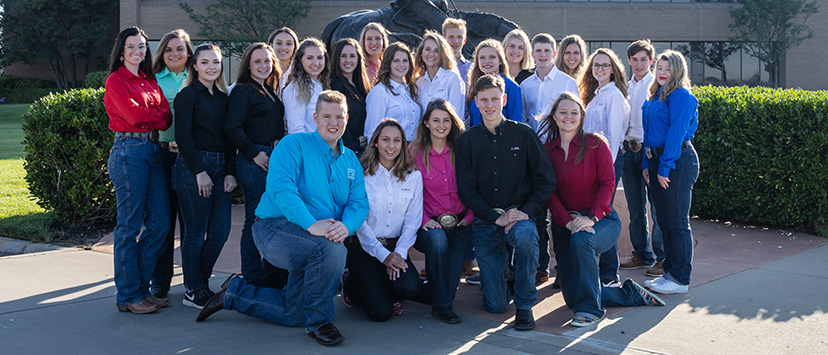 2019-20 AQHYA Executive Committee and Directors