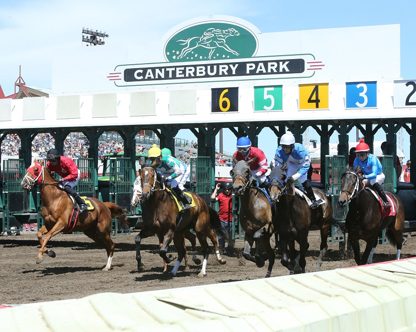 Horses break out of the starting gate at Canterbury Park.