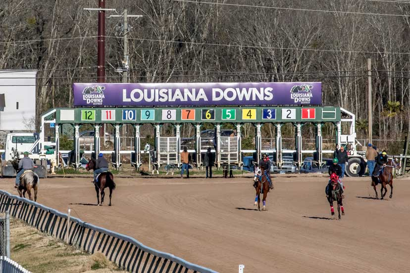 Louisiana Downs morning works - photo credit Hodges Photography