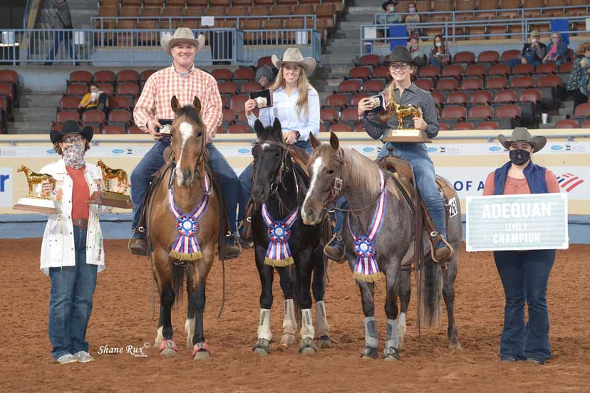 Level 2 amateur team penning car trouble kristin lane royaly dun n savanah and matthew lane and metallic socks and kathryn mitchell