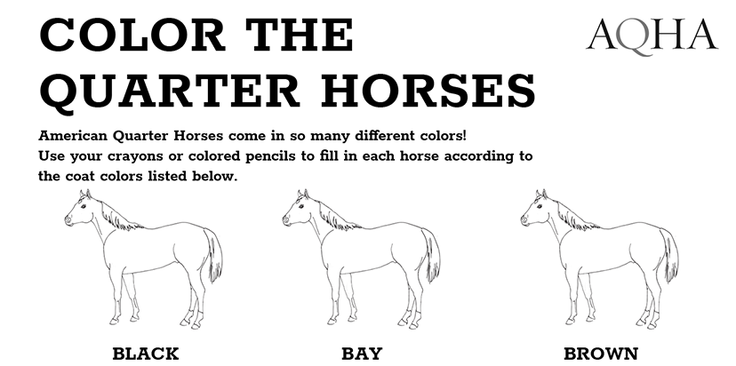 - Color The Quarter Horses Free Downloadable Coloring Pages - AQHA