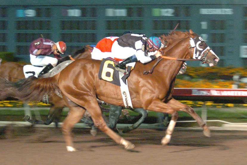 World champion Be A Bono wins the 2004 Spencer Childers California Championship