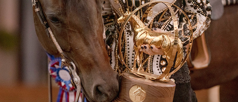 bay horse wearing neck wreath looks at AQHA gold globe trophy