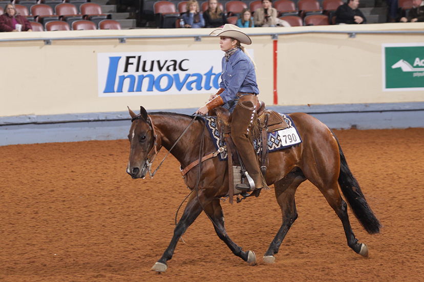 Sara Gugelmeyer and Colonels Miss Chic compete in ranch riding at the 2013 AQHA World Show (Credit: Journal)