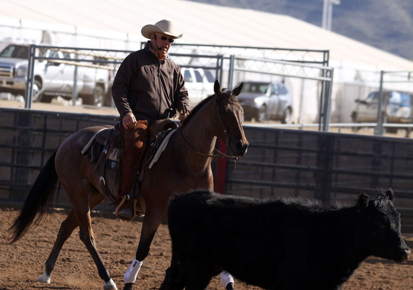 AQHA Professional Horseman Al Dunning conducts a cow work clinic at the Arizona Sun Circuit (Credit: Journal)