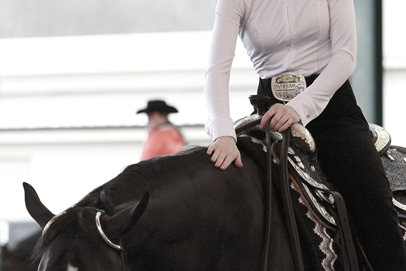 plain white show shirt black horse (Credit: AQHA)
