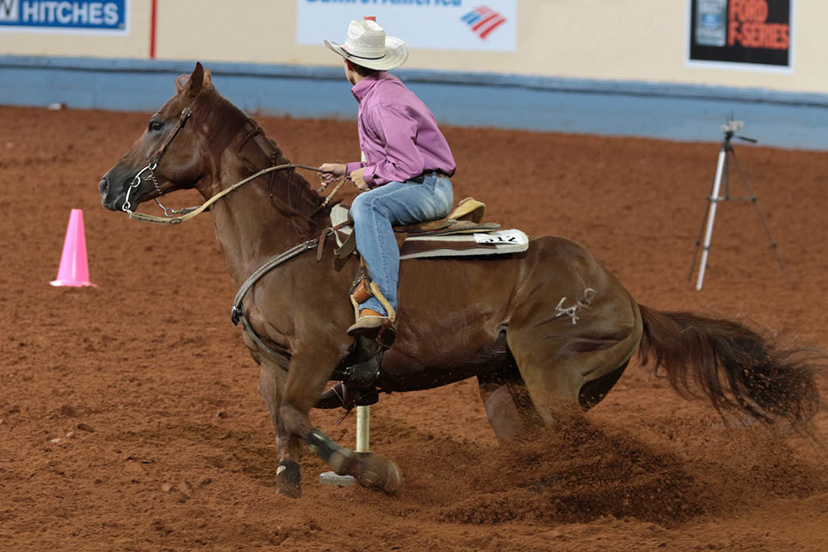 stake race 2015 aqha youth world champion (Credit: Journal)